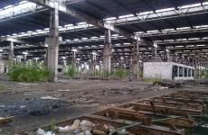 fabrica_lansare_udrea (2)