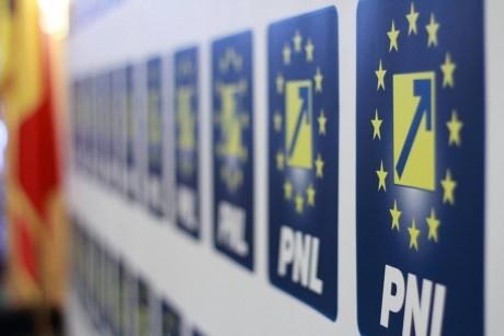 PNL vrea, dar PNL poate? Mizele celei mai rapide moțiuni de cenzură/ ANALIZĂ