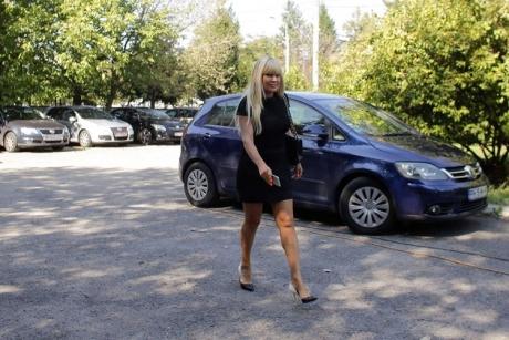DOCUMENT - Ce a scris Elena Udrea în APELUL la condamnarea de la ÎCCJ
