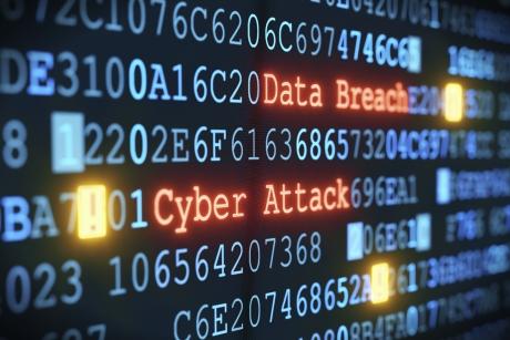 Un turc stabilit în SUA, autorul atacurilor cibernetice care au paralizat instituţiile austriece