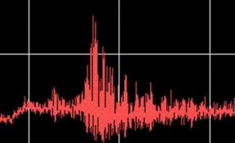 Sudul României, 'zguduit' de cutremur: Un seism puternic a avut loc în Bulgaria! Ce anunță INFP