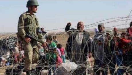 Încă o țară din Europa anunță că își ÎNCHIDE granița cu garduri de sârmă ghimpată: Modelul a fost patentat de Ungaria