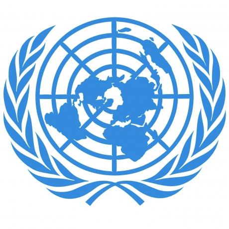 MĂCEL în Africa: Opt soldați ONU au fost UCIȘI, iar 7 sunt în stare gravă