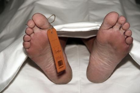 Descoperire macabră - Cadavrul unui bărbat a fost găsit pe un câmp, sfâşiat de animale