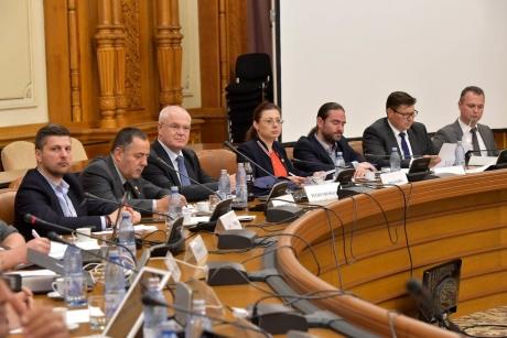 Noi runde de audieri la comisia parlamentară de anchetă. Cine va fi interogat de parlamentari