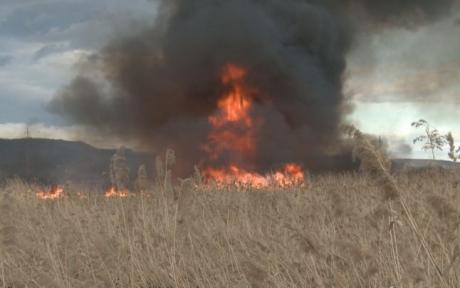 ISU Neamț: Incendiu pe circa 10 hectare cu vegetaţie uscată, cu risc de extindere la pădure
