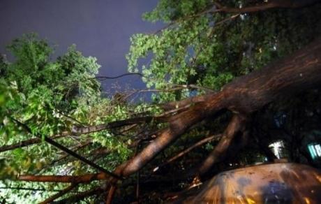 ANM a emis COD GALBEN de furtuni pentru două județe