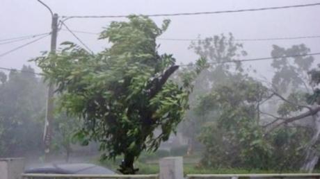 Cod galben de vânt valabil în județe din zona Moldovei