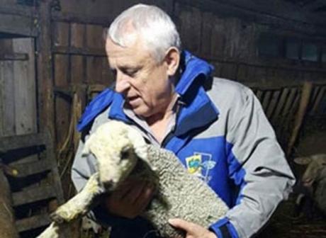 SENZAȚIONAL Petre Daea a atins CULMEA AGRICULTURII: Imagini cu ministrul într-o ipostază INCREDIBILĂ - VIDEO