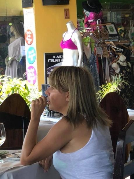 O nouă RĂSTURNARE de situație în cazul Elenei Udrea! Cine și ce documente a trimis URGENT în Costa Rica