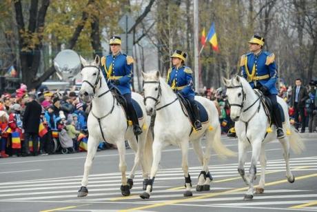 Proiect în Parlament: câinii și caii de la Jandarmerie vor primi PENSIE