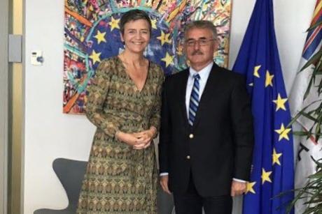 ALDE european a intrat în campanie electorală: un candidat este cunoscut pentru sancţiunile financiare dure aplicate multinaţionalelor americane