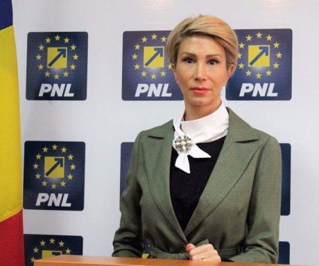 PNL solicită PSD-ALDE să oprească modificarea Codurilor, până după referendumul pe justiție