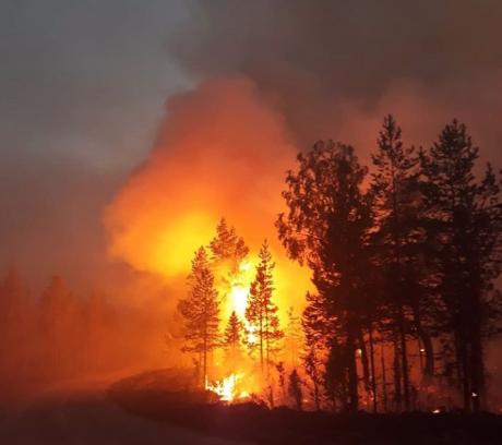 Incendii de pădure fără precedent în Suedia după valul de câldură neobișnuit de la Cercul Polar. Ajutor masiv din partea statelor UE