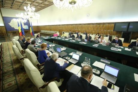 Primul ministru din Guvernul Viorica Dăncilă care e sincer: 'Recunosc că birocrația m-a învins'