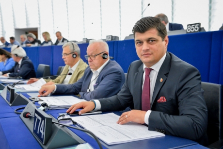 Europarlamentarul Laurențiu Rebega, apel de Centenar