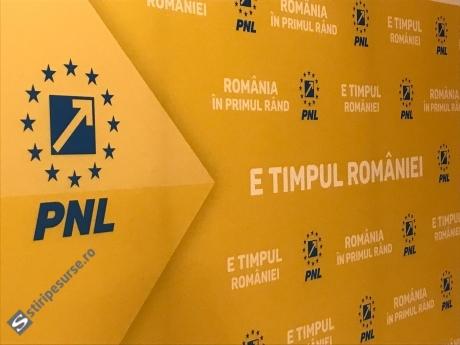 PNL, singurul partid care promovează clipul lui Iohannis pentru referendum pe spațiul său electoral